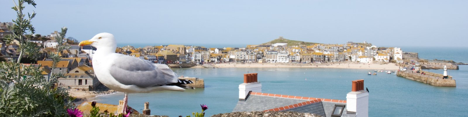 Self Catering Holiday Cottages In St Ives Cornwall