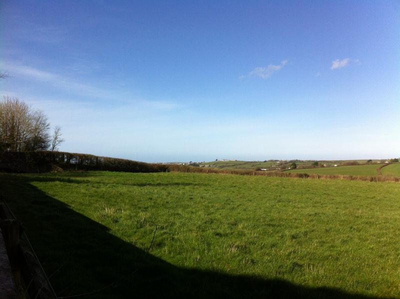Places To Eat In The Padstow Area Dog Friendly