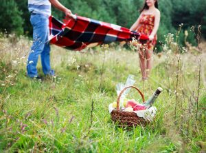 Don't forget the picnic blanket & wine!