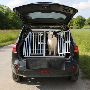 Dog looking out of the back of the car with boot door and cage gate open