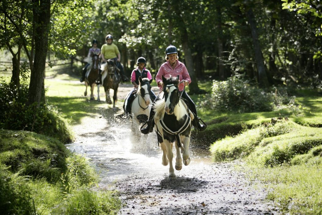 Horse riders cantering through water in the forest
