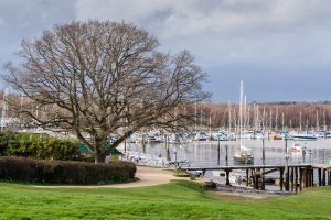Shot of sail boats in the Marina with grass area in front