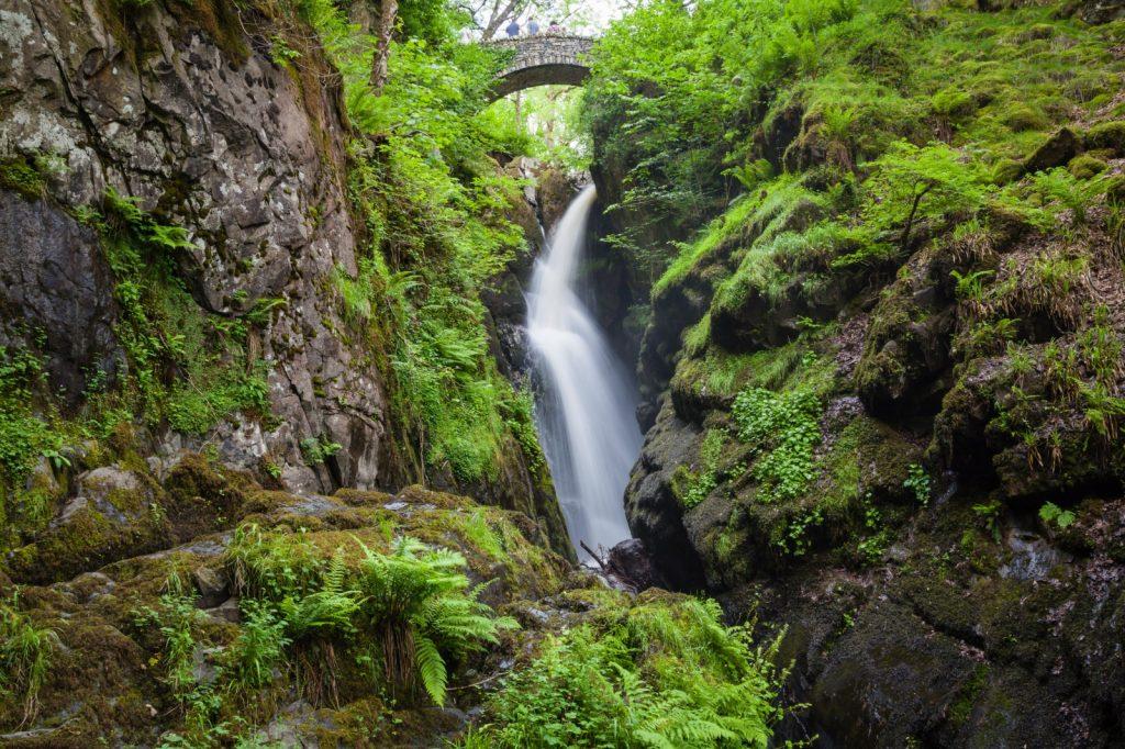 Waterfall cascading under stone bridge down a gulley with bracken