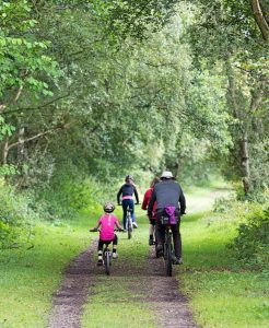 Parents and children cycling along a forest track in summer with leaves on trees