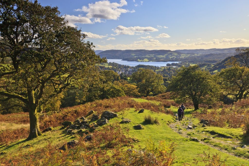 Couple walking dog over the fells with a lake in the distance in front