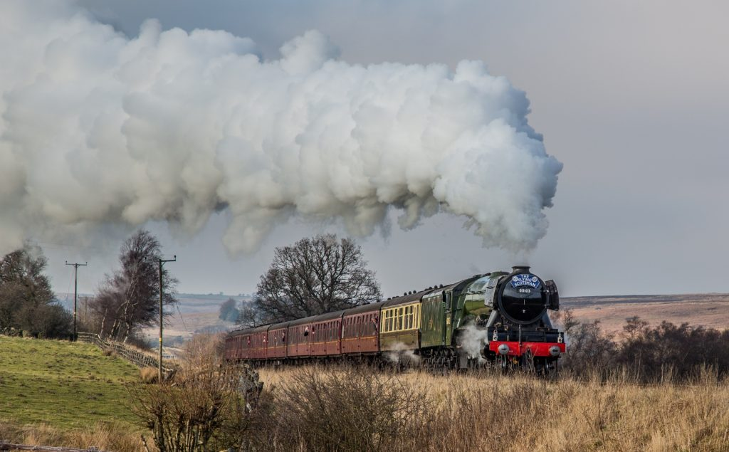 The Flying Scotsman travelling through countryside with steam coming out the top