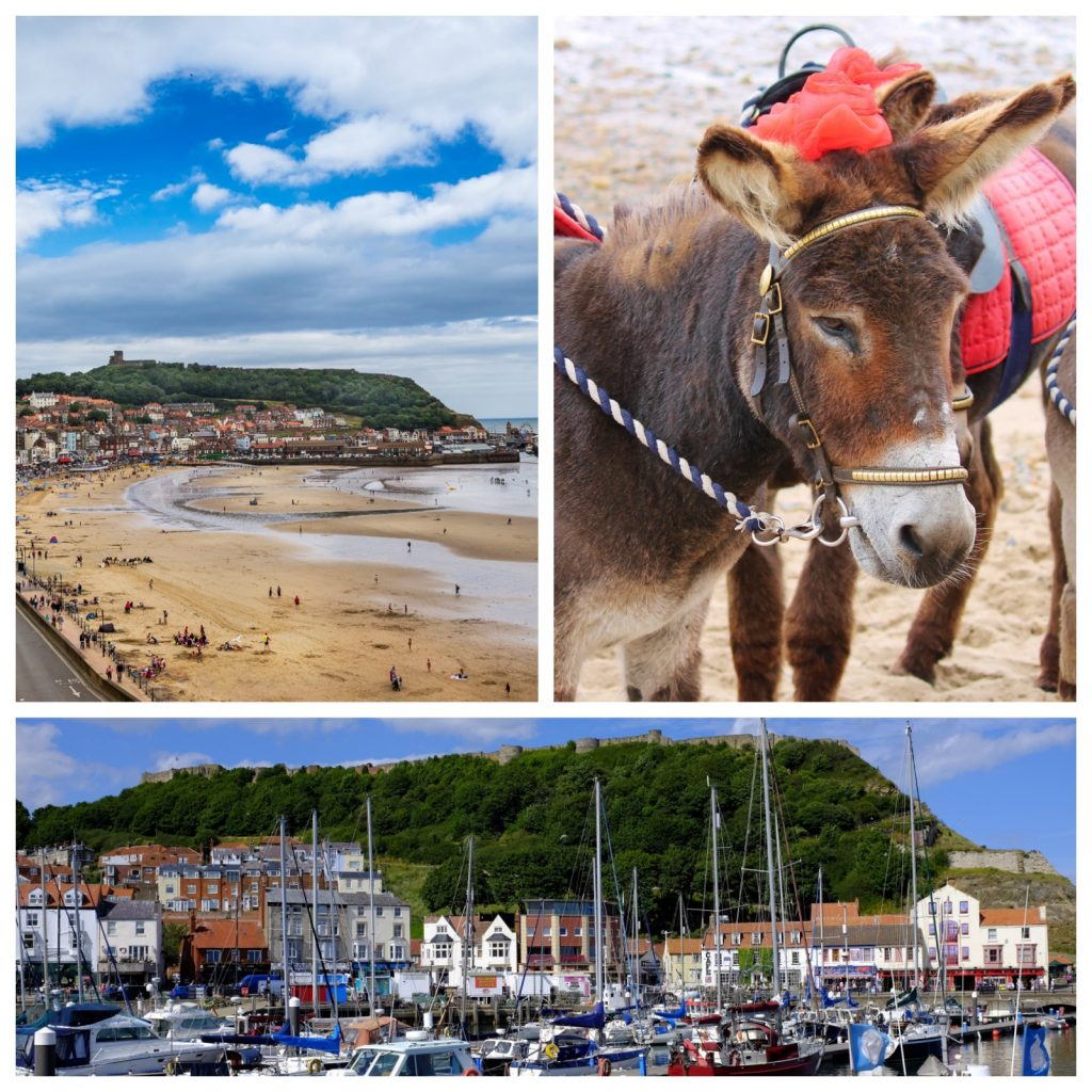 Collage of three photos (a donkey on the beach, marina with boats and castle above and sandy beach)