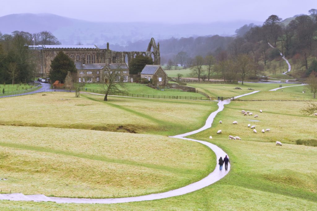 Distant shot of Bolton Abbey with two people walking along winding road towards it, with sheep grazing land